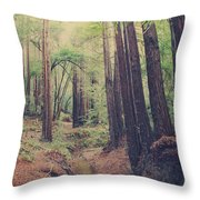 Wherever You May Roam Throw Pillow