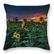 Whispers Of Summer Throw Pillow by John De Bord