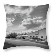 White Bear Island Marine Throw Pillow