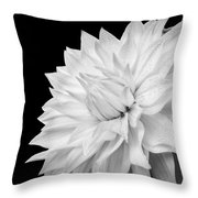 White Dahlia Throw Pillow