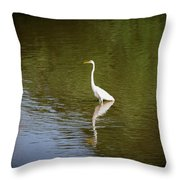 White Egret In Water Throw Pillow
