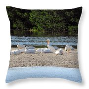 White Pelican Rest Throw Pillow