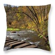 Whitewater River Scene 55 C Throw Pillow