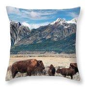 Wild Bison On The Open Range Throw Pillow