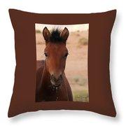 Wild Horse Luke Throw Pillow