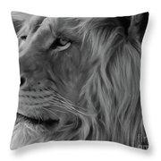 Wild Lion Face Throw Pillow