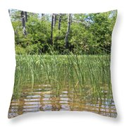 Wild Waters Throw Pillow