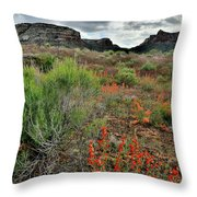 Wildflowers Beneath Colorado Nm At Ruby Mountain Throw Pillow by Ray Mathis