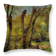 Willows 1885 Throw Pillow
