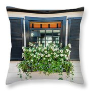 Window Full Of Flowers Throw Pillow