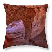 Windstone Up Close Throw Pillow