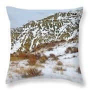 Winter Badlands Throw Pillow