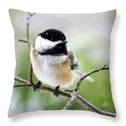 Winter Black Capped Chickadee Throw Pillow