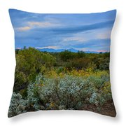 Winter In The Valley  H1933 Throw Pillow by Mark Myhaver