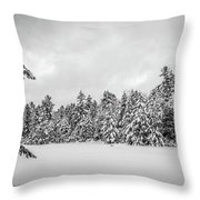 Winter Storm Anderson Pond Throw Pillow