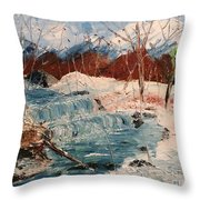 Winter Stream Throw Pillow by Denise Tomasura