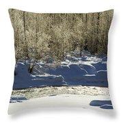 Winter Stream Near Hope On The Kenai Peninsula Alaska Throw Pillow