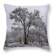 Winter Survivor Throw Pillow