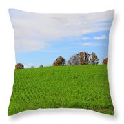 Winter Wheat In October In Southern Ontario Throw Pillow