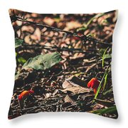 Witch's Hat Mushrooms Throw Pillow