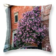 With Great Intention Throw Pillow