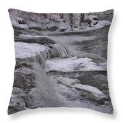 Wny Winter Wonderland Throw Pillow