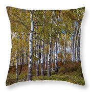 Wonders Of The Wilderness Throw Pillow