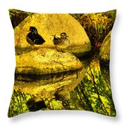 Wood Duck Pair And Their Reflection Throw Pillow