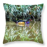 Wood Duck Reflection Throw Pillow