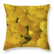 Yellow Blooms Throw Pillow by Mark Shoolery