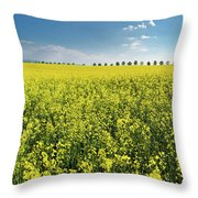 Yellow Canola Field And Blue Sky Spring Landscape Throw Pillow