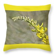 Yellow Lupine Throw Pillow by Carolyn Marshall