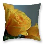 Yellow Roses Throw Pillow by Ann E Robson