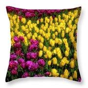 Yellow Star Tulips Throw Pillow