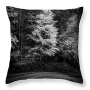 Yellow Tree In The Curve In Black And White Throw Pillow