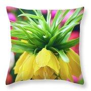 Yellow Tulip Close Up Throw Pillow