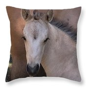Young Colt Throw Pillow