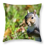 Your Friendly Neighborhood Squirrel Throw Pillow