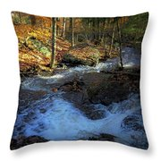 Your Morning Blessing Throw Pillow