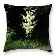 Yucca Blossoms Throw Pillow