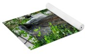001 Falling Waters For The Cactus Lover In You Buffalo Botanical Gardens Series Yoga Mat
