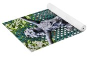 001 Fountain Buffalo Botanical Gardens Series Yoga Mat