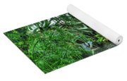 001 Within The Rain Forest Buffalo Botanical Gardens Series Yoga Mat