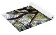 Beautiful Oak Yoga Mat