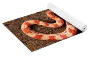 Corn Snake P. Guttatus On Tree Bark Yoga Mat