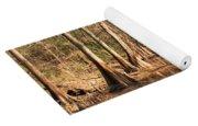Cypress Waterway Yoga Mat