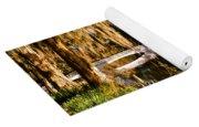 Footbridge Over Swamp, Magnolia Yoga Mat