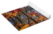 Lake And Fall Forest Yoga Mat