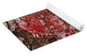 Red Lichen  Yoga Mat
