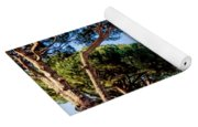 St Peters Basilica Dome Yoga Mat